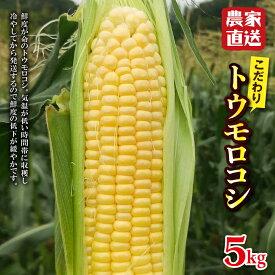【ふるさと納税】農家直送!こだわりトウモロコシ 5kg F20E-680