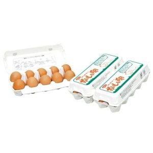 【ふるさと納税】岩田のおいしい卵厳選大玉30個(10個入り×3パック)【1039739】