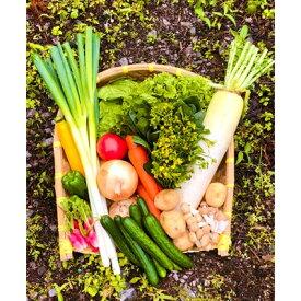 【ふるさと納税】八州高原マルシェ自慢の旬な野菜たち【1039760】