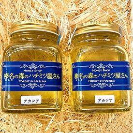 【ふるさと納税】榛名山の麓、榛東村のアカシアの蜂蜜2本セット(たっぷり300g×2)【1081708】