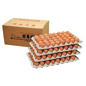 【ふるさと納税】【業務用サイズ】岩田のおいしい卵小玉160個+破卵保障20個入り【1092661】