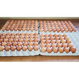 【ふるさと納税】【業務用サイズ】岩田のおいしい卵 中玉145個+破卵保障20個入り【1120147】