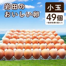 【ふるさと納税】岩田のおいしい卵 小玉49個+破卵保障5個入り【1077545】
