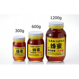 【ふるさと納税】【2630-0012】日本みつばちの蜂蜜1,200g