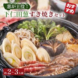 【ふるさと納税】「葱が主役」下仁田葱すき焼き F21K-077