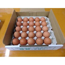 【ふるさと納税】有名レストラン、一流老舗旅館で使われる「浅間とり牧場卵」大玉25個