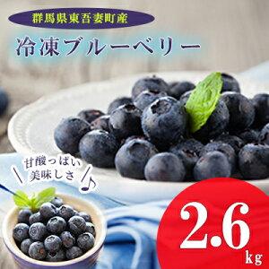 【ふるさと納税】東吾妻町産 冷凍ブルーベリー2.6kg 【果物詰合せ・フルーツ・冷凍ブルーベリー・ブルーベリー】