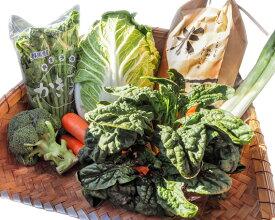 【ふるさと納税】No.039 野菜詰め合わせセット / 詰合せ ネギ ほうれん草 にんじん 群馬県