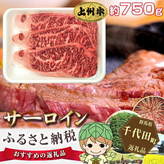【ふるさと納税】No.015 上州牛(サーロイン)約750g
