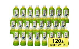 【ふるさと納税】綾鷹525mlペットボトル×24本セット×5箱 【11100-0051】