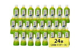 【ふるさと納税】綾鷹525mlペットボトル×24本セット【11100-0016】