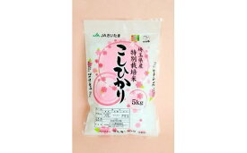 【ふるさと納税】さいたま市産特別栽培米こしひかり5kg【11100-0011】