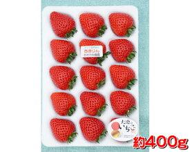 【ふるさと納税】No.228 ただかね農園のあまりん 約400g / いちご イチゴ 苺 朝採り 果物 国産 埼玉県