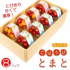 【ふるさと納税】ごほうびトマト8パックミックス