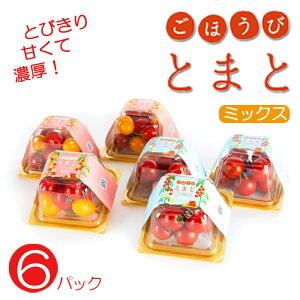 【ふるさと納税】ごほうびトマト6パックミックス