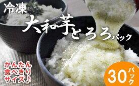 【ふるさと納税】冷凍大和芋とろろパック 【11218-0367】