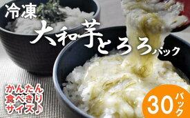【ふるさと納税】冷凍大和芋とろろパック詰合せ 【11218-0322】