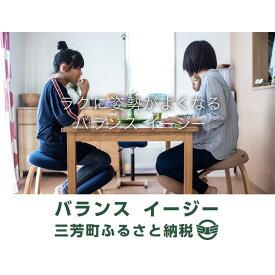 【ふるさと納税】バランス イージー(カバー付き)