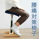 【ふるさと納税】バランス・シナジー