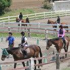 【ふるさと納税】体験乗馬メンバー体験コース