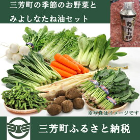 【ふるさと納税】三芳町の季節のお野菜とみよしなたね油セット