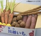【ふるさと納税】落ち葉野菜セット