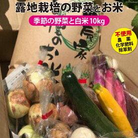 【ふるさと納税】No.020 有機農家の季節の野菜と白米10kgのセット / お米 精米 彩のかがやき やさい 農産物 旬 埼玉県 特産品