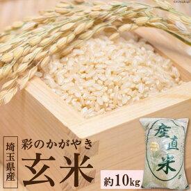 【ふるさと納税】No.036 小川町産 彩のかがやき玄米 10kg / お米 令和2年産 埼玉県 特産品