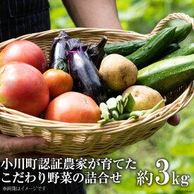 【ふるさと納税】No.135 OGAWA'N 野菜セット / 小川町の認証農家が育てた愛情いっぱいのこだわりやさい 農産物 詰合せ 旬 埼玉県 特産品