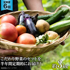 【ふるさと納税】No.138 OGAWA'N 野菜セットの定期便(年12回) / 小川町の認証農家が育てた愛情いっぱいのこだわりやさい 農産物 詰合せ 旬 埼玉県 特産品