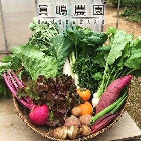 【ふるさと納税】季節のおまかせ野菜セット 詰め合わせ ※沖縄及び離島へのお届けはできません