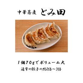 【ふるさと納税】【中華蕎麦とみ田】心の味餃子5個×2セット 冷凍 有名店 餃子