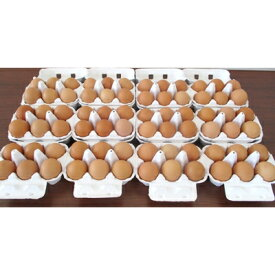 【ふるさと納税】平飼い養鶏 鶏卵(6個入12パック)【1040998】