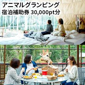 【ふるさと納税】アニマルグランピング「THE BAMBOO FOREST」宿泊補助券 30,000pt分 【宿泊券・チケット】