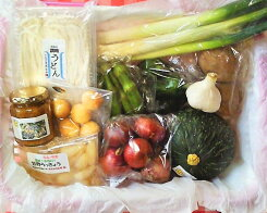 【ふるさと納税】No.009季節の野菜と手打ちうどんと加工品のセット【福祉施設提供】