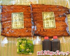 【ふるさと納税】No.023国産鰻蒲焼約120g×2パック