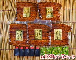 【ふるさと納税】No.031国産鰻蒲焼約120g×5パック