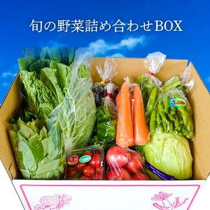 【ふるさと納税】農家のこだわり 旬の野菜詰め合わせBOX 国産 千葉県富津市 地場産 野菜セット 6種類以上 送料無料