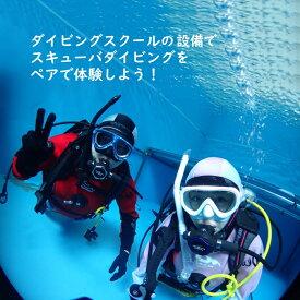 【ふるさと納税】 ペアでダイビング体験 2名様 体験時間3時間 ダイビング専用プール 初心者歓迎
