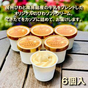 【ふるさと納税】びわソフトクリームアイス6個セット 5651-0881