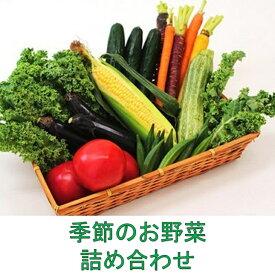 【ふるさと納税】季節のお野菜詰め合わせ 5651-0892