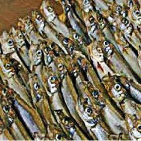 【ふるさと納税】子持ちシシャモ 1.5kg(500g×3袋)【訳あり】 5651-0790