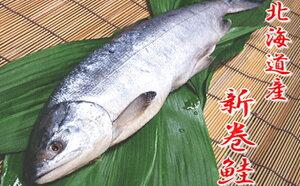 【ふるさと納税】新巻鮭1本(2kg前後・北海道産) 5651-0495
