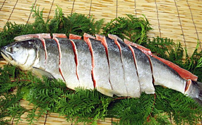 5651-0496【ふるさと納税】新巻鮭1本(切身) 1.5kg前後(北海道産)
