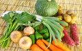 5651-0500【ふるさと納税】南房総産とれたて野菜ボックス