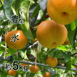 【ふるさと納税】A619 甘みと酸味のバランスが絶妙!千葉県いすみ市の豊水梨 ※お届けは8月下旬から