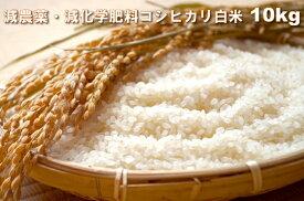 【ふるさと納税】A636 減農薬・減化学肥料コシヒカリ白米10kg(令和元年産)