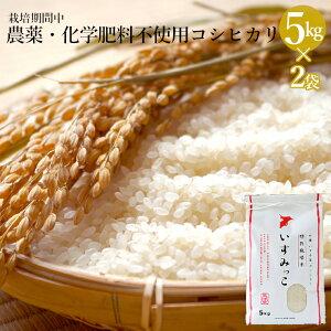 【ふるさと納税】 米 10kg 農薬・化学肥料不使用 特別栽培米 送料無料 コシヒカリ こしひかり 白米 10キロ