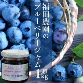【ふるさと納税】 ジャム 国産 1kg超 ブルーベリー 送料無料 千葉県産
