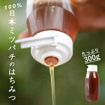 【ふるさと納税】はちみつ日本ミツバチ100%千葉県産300g使い切れる専用容器送料無料